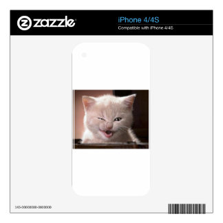 Cat Decal For The iPhone 4S
