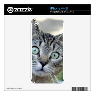 Cat Decals For iPhone 4S