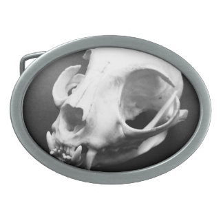 Cat Skull Taxidermy Spooky Belt Buckle