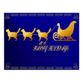 Cat Sled card Post Card