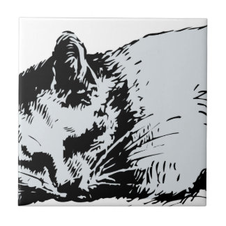 cat sleep ceramic tile
