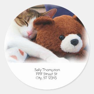 Cat Sleep Teddy Bear Address Classic Round Sticker