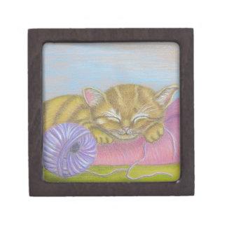 cat sleeping gift box