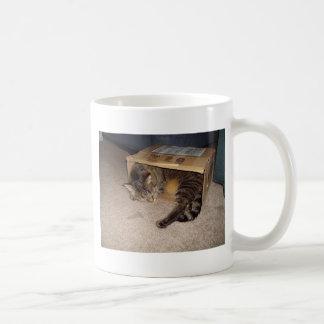 Cat sleeping in box coffee mug