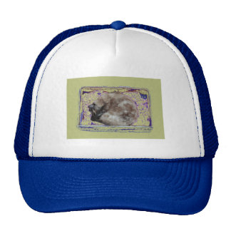 Cat Sleeping in Box Digitally Enhanced Photo Trucker Hat