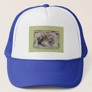 Cat Sleeping in Box Digitally Enhanced Photo Trucker Hat