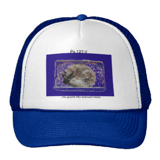 Cat Sleeping in Box Scripture Cap Ps 127 2 Hats