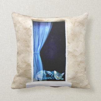 Cat Sleeping in Window Pillow