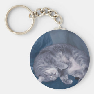 cat sleeping key chains