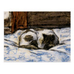 Cat Sleeping on a Bed Postcard