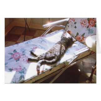 Cat Sleeping on Chaise Lounge Retro Kitten Picture Card