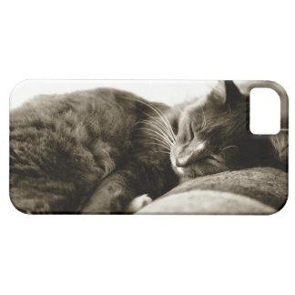 Cat sleeping on sofa (B&W sepia tone) iPhone SE/5/5s Case