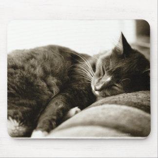 Cat sleeping on sofa (B&W sepia tone) Mouse Pad