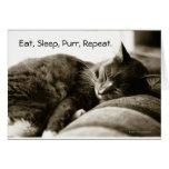 Cat sleeping on sofa card