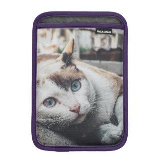 cat sleeve for iPad mini