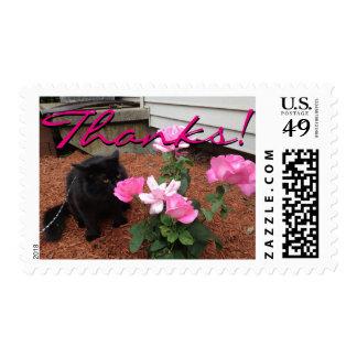Cat Smelling Pink Roses, Thanks Postage Stamp