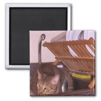 Cat Sous-Chef Hiding in the Sink CricketDiane 2 Inch Square Magnet