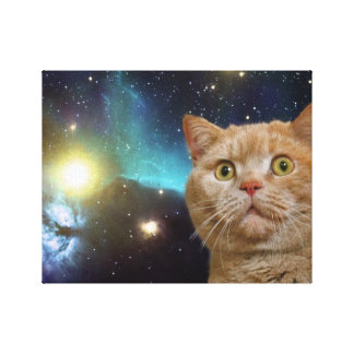 Cat staring at the universe canvas print