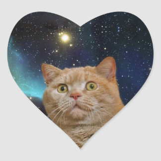 Cat staring at the universe heart sticker