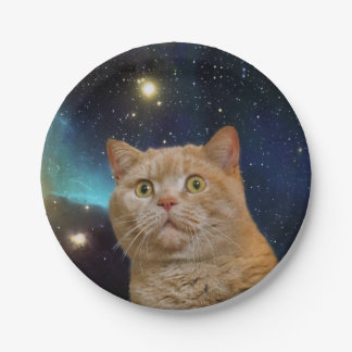 Cat staring at the universe paper plate