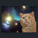 "Cat staring at the universe photo print<br><div class=""desc"">scared cat, space cat, funny cats , cute cats , staring  orange cosmic meme,  galaxy cool cosmos stars,  kittens cute eyes kitty , supernova universe nebula kitten , stellar astronaut green feline,  pet furry little animal</div>"