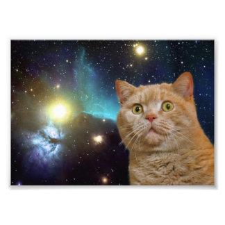 Cat staring at the universe photo print