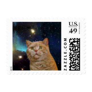 Cat staring at the universe postage