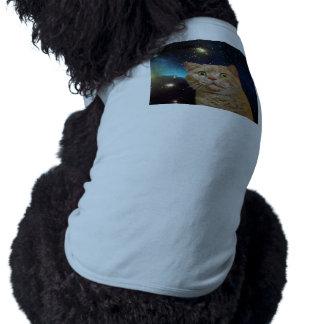 Cat staring at the universe shirt