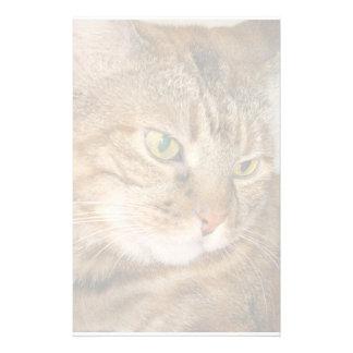 Cat Customized Stationery