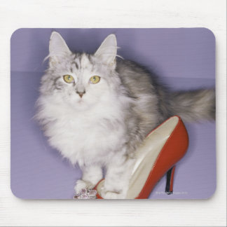 Cat stepping into high heel mouse pad