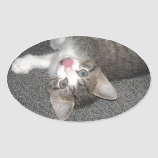 Cat Sticking Out Tongue Oval Stickers