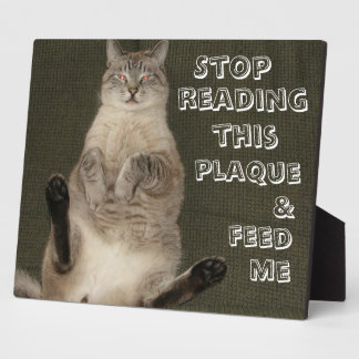 "Cat ""STOP READING THIS PLAQUE & FEED ME"" Plaque"