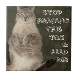 """Cat """"STOP READING THIS TILE & FEED ME"""" Tile"""