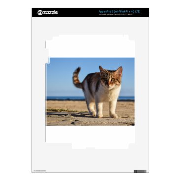 Beach Themed Cat Stray Animal Cute Young Face Eyes Beach Decal For iPad 3