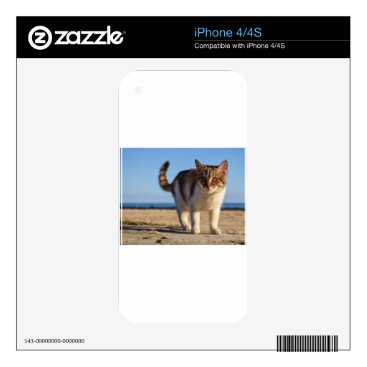 Beach Themed Cat Stray Animal Cute Young Face Eyes Beach iPhone 4 Skin