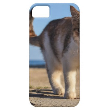 Beach Themed Cat Stray Animal Cute Young Face Eyes Beach iPhone SE/5/5s Case