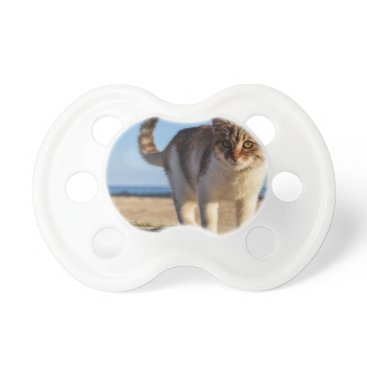 Beach Themed Cat Stray Animal Cute Young Face Eyes Beach Pacifier