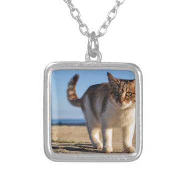 Beach Themed Cat Stray Animal Cute Young Face Eyes Beach Silver Plated Necklace
