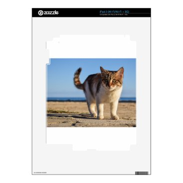 Beach Themed Cat Stray Animal Cute Young Face Eyes Beach Skins For iPad 2