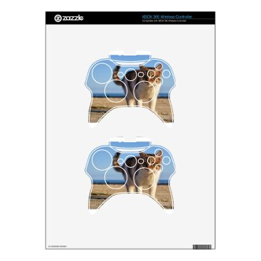Beach Themed Cat Stray Animal Cute Young Face Eyes Beach Xbox 360 Controller Decal