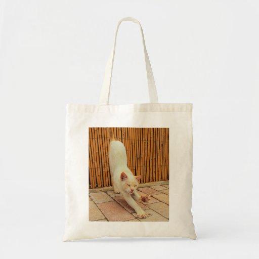 Cat Stretching Bag