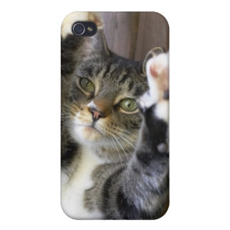 Cat stretching, indoors iPhone 4/4S cover
