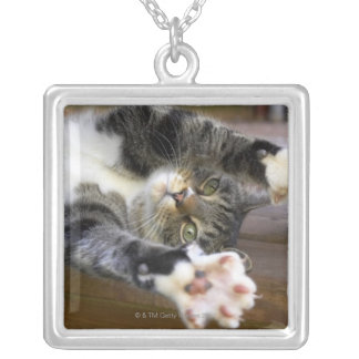 Cat stretching, indoors silver plated necklace
