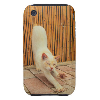Cat Stretching iPhone 3G/3GS Tough Case iPhone 3 Tough Covers