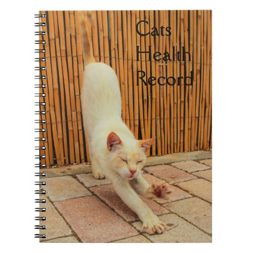 Cat Stretching Notebook
