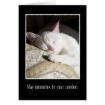 Cat Sympathy Loss of Pet Card