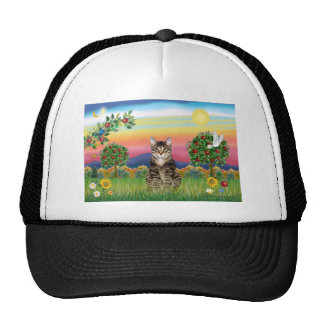 Cat (Tabby1) - Bright Country Trucker Hat