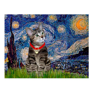 CAT Tabby2 - Starry Night Post Card