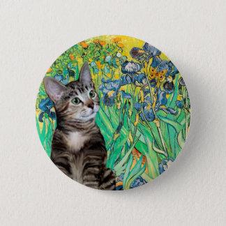 Cat (Tabby 2) - Irises Button
