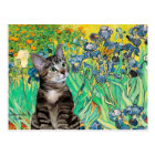 Cat (Tabby 2) - Irises Postcard